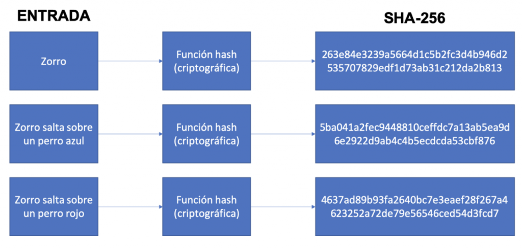 Función hash según entrada de texto